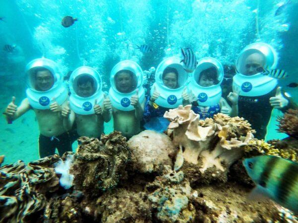 Đi bộ, ngắm san hô từ đáy biển